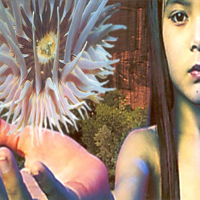 future-sound-of-london-lifeforms-cover