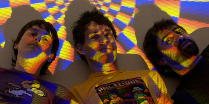 Animal Collective 2009