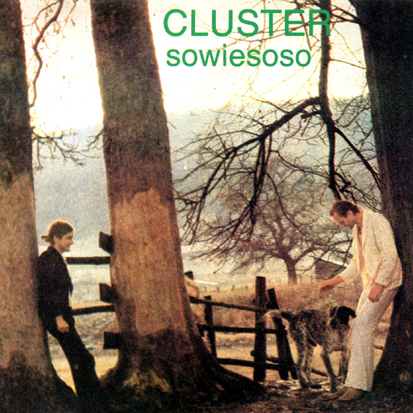 cluster-sowiesoso